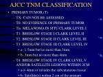 ajcc tnm classification