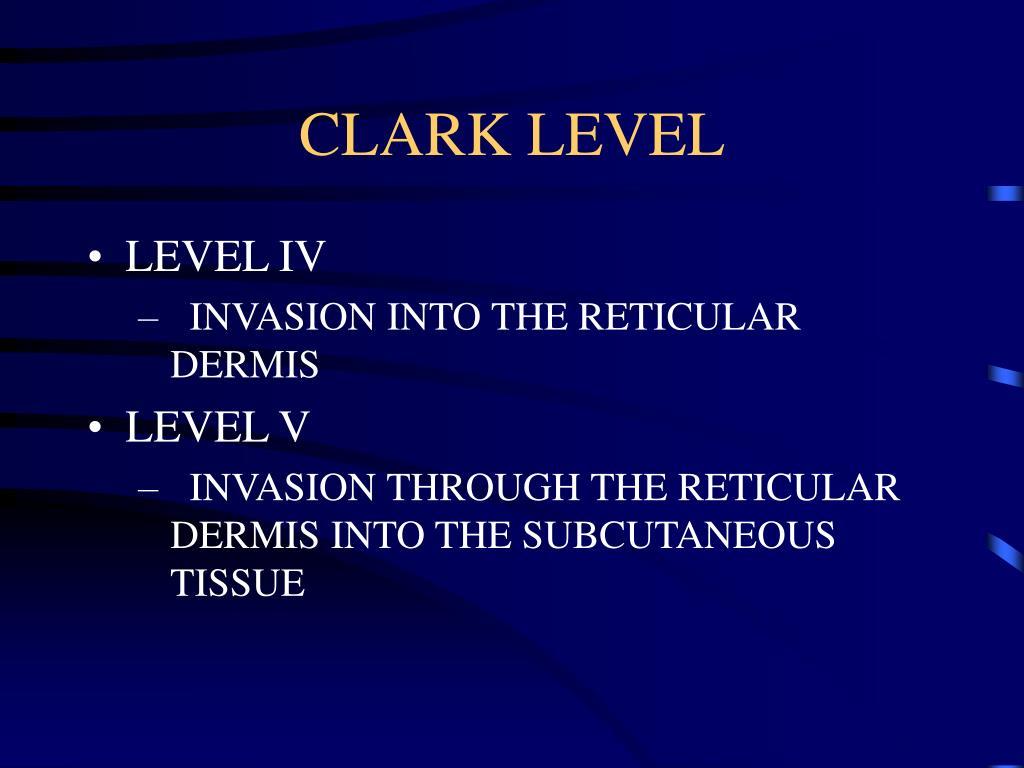 CLARK LEVEL