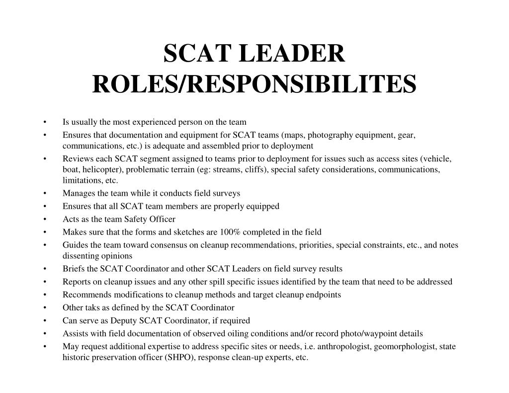 SCAT LEADER ROLES/RESPONSIBILITES