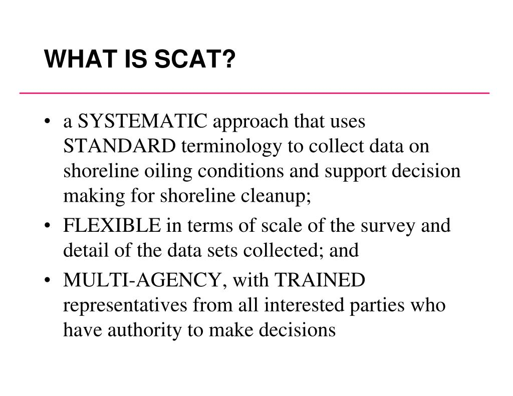 WHAT IS SCAT?