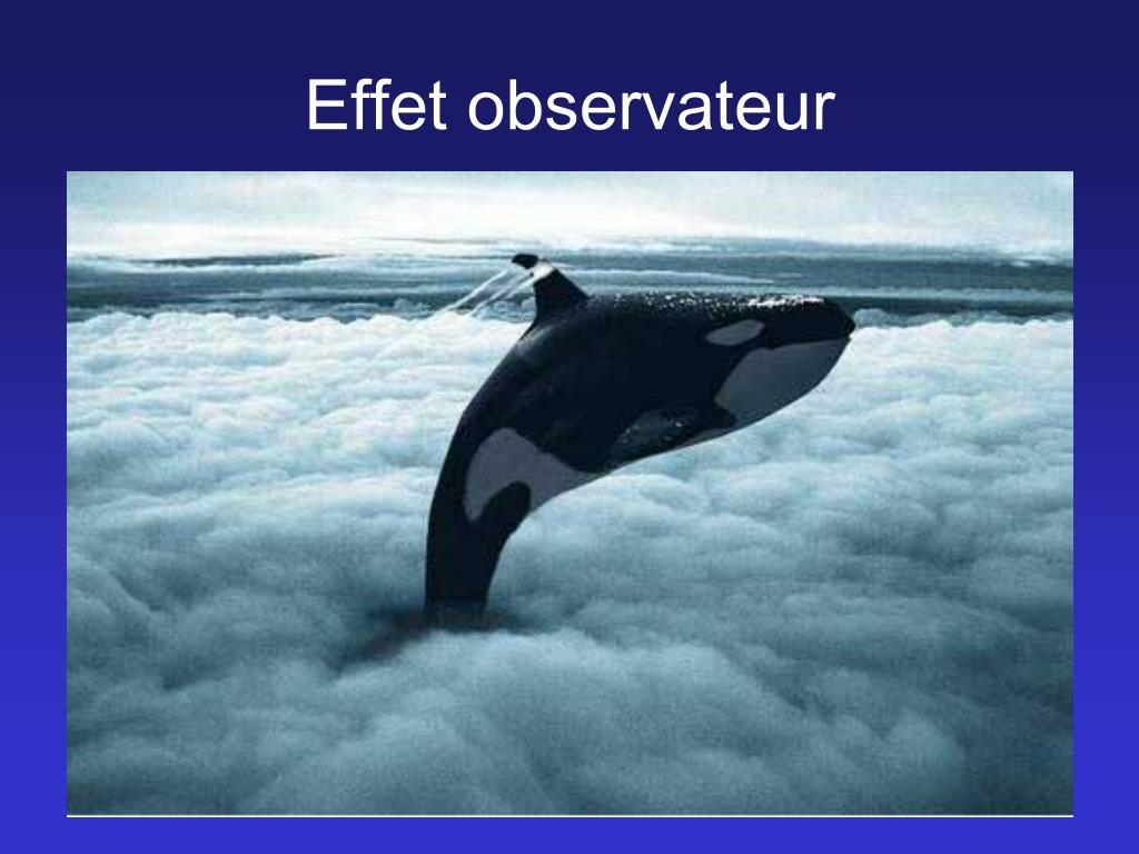 Effet observateur