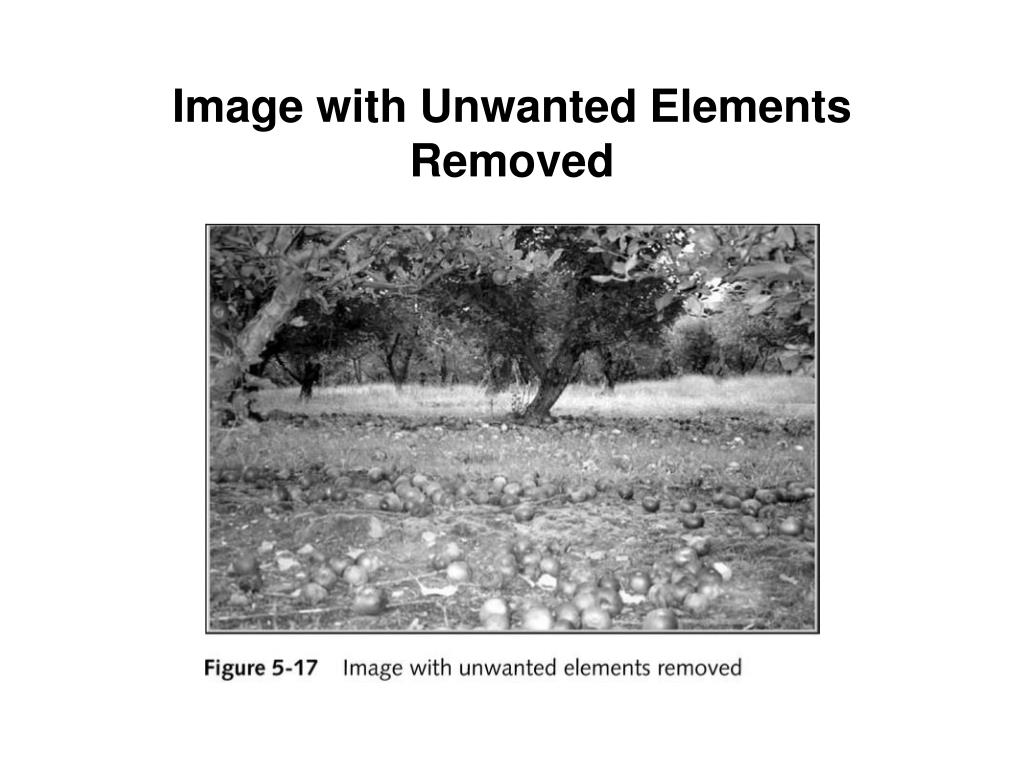 Image with Unwanted Elements Removed