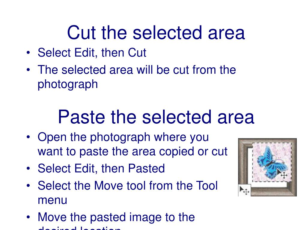 Cut the selected area
