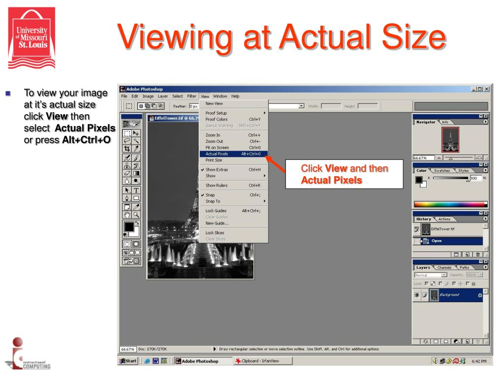 Viewing at Actual Size