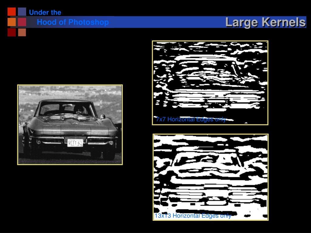 Large Kernels
