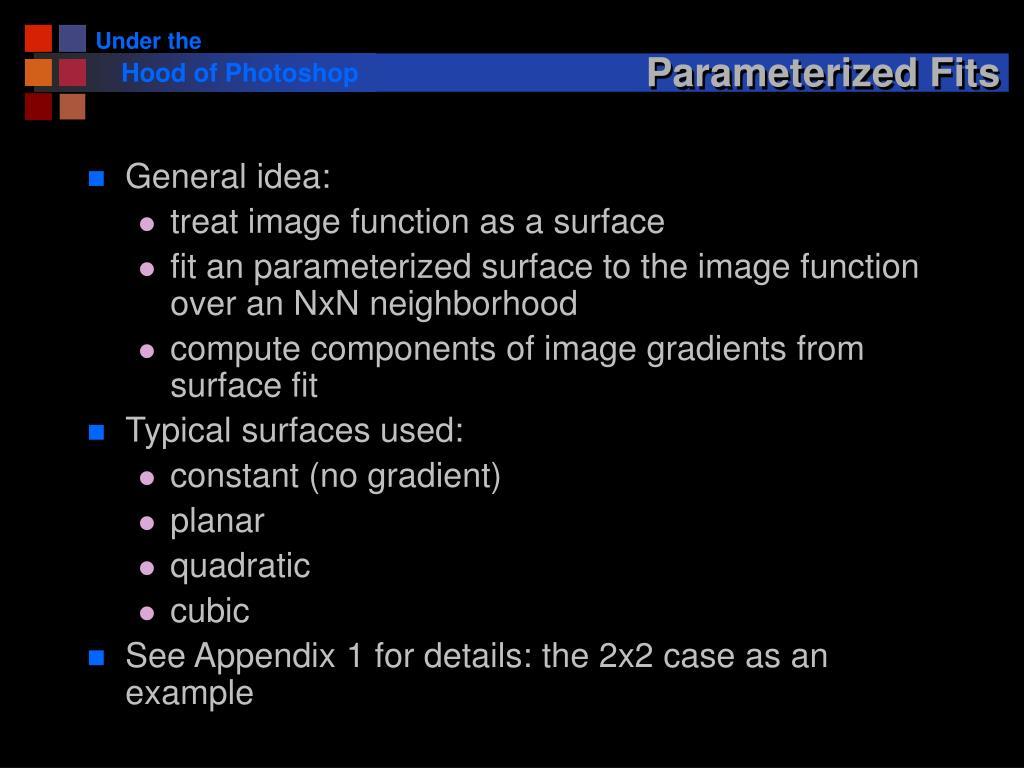 Parameterized Fits