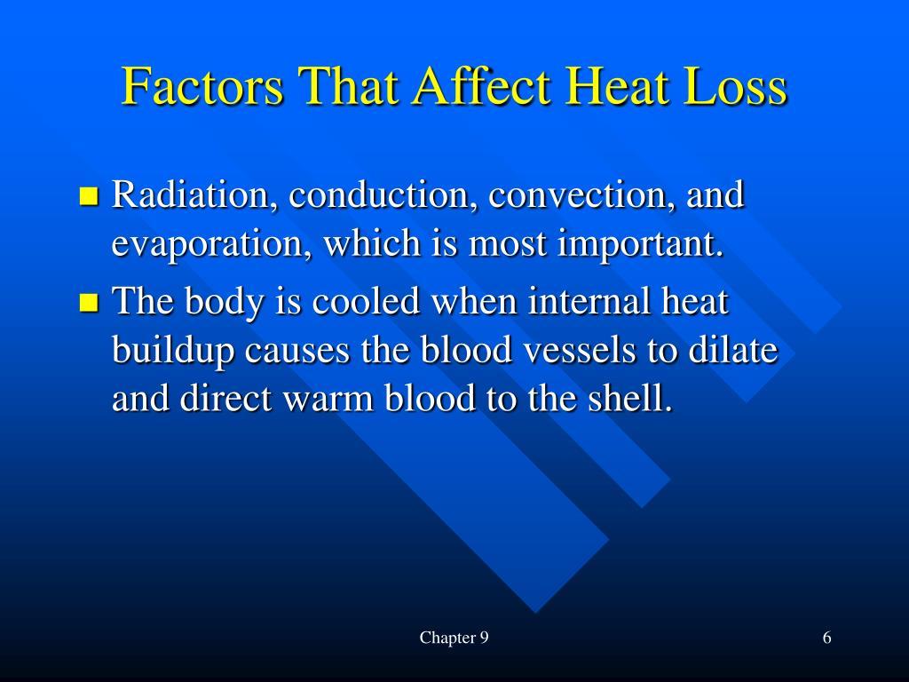 Factors That Affect Heat Loss