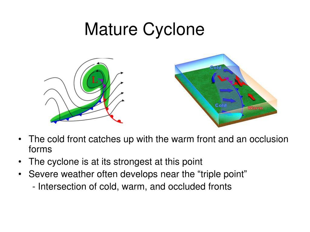 Mature Cyclone