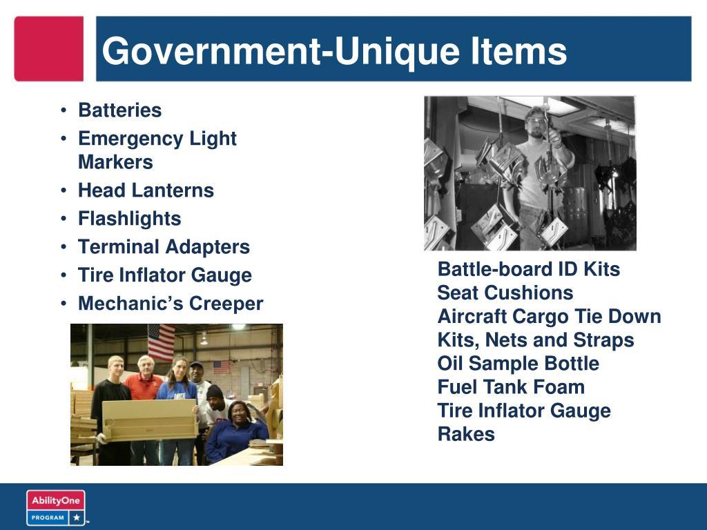 Government-Unique Items