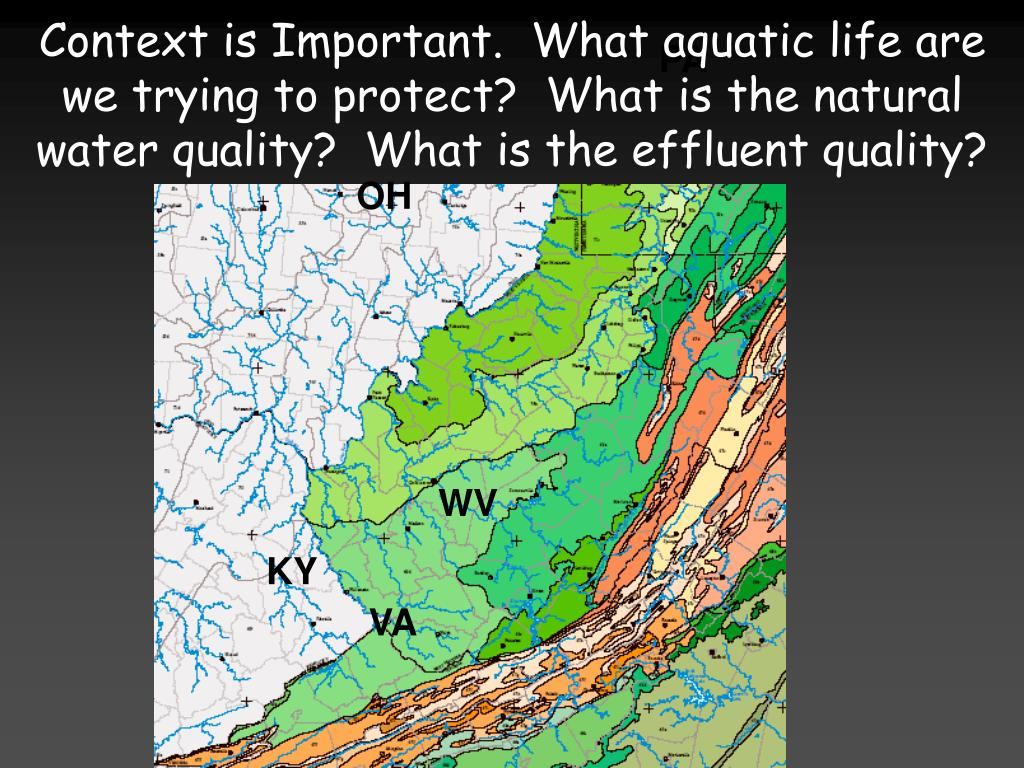 Context is Important.  What aquatic life are we trying to protect?  What is the natural water quality?  What is the effluent quality?
