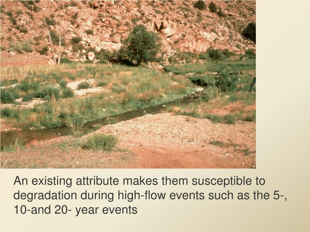 An existing attribute makes them susceptible to degradation during high-flow events such as the 5-, 10-and 20- year events