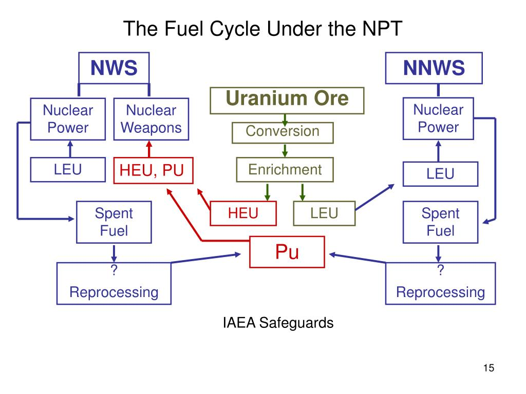 The Fuel Cycle Under the NPT