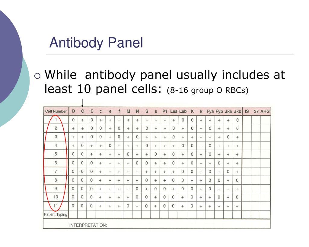 Antibody Panel
