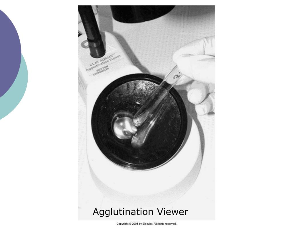 Agglutination Viewer
