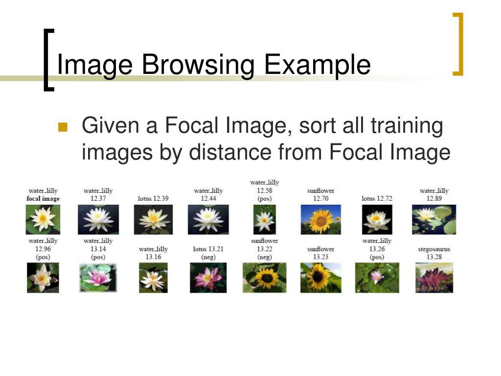 Image Browsing Example