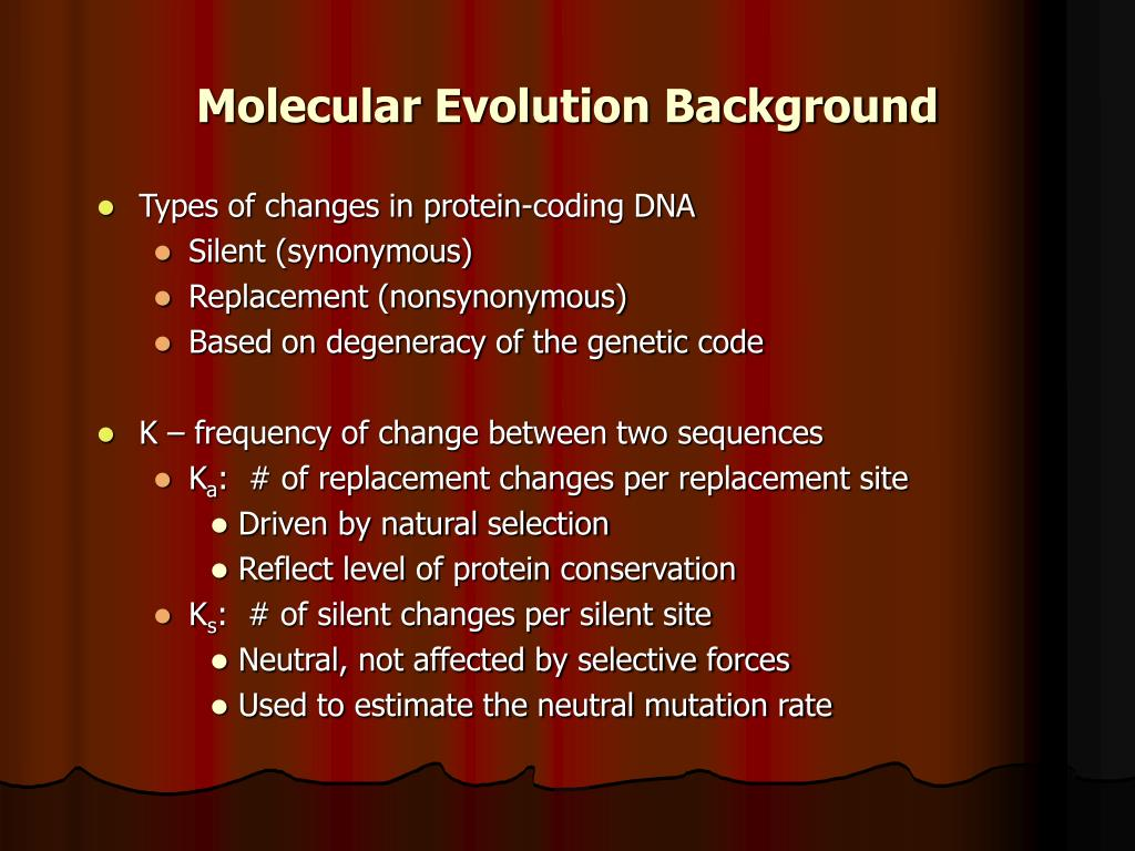 Molecular Evolution Background