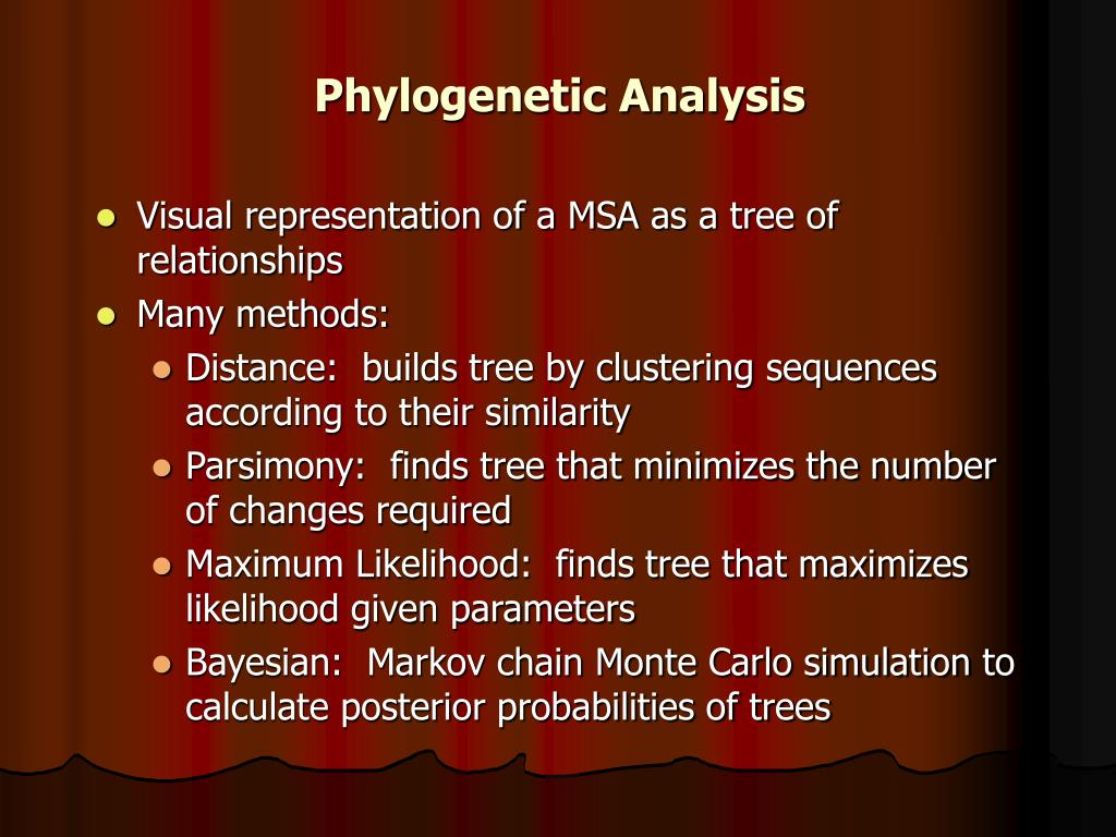 Phylogenetic Analysis
