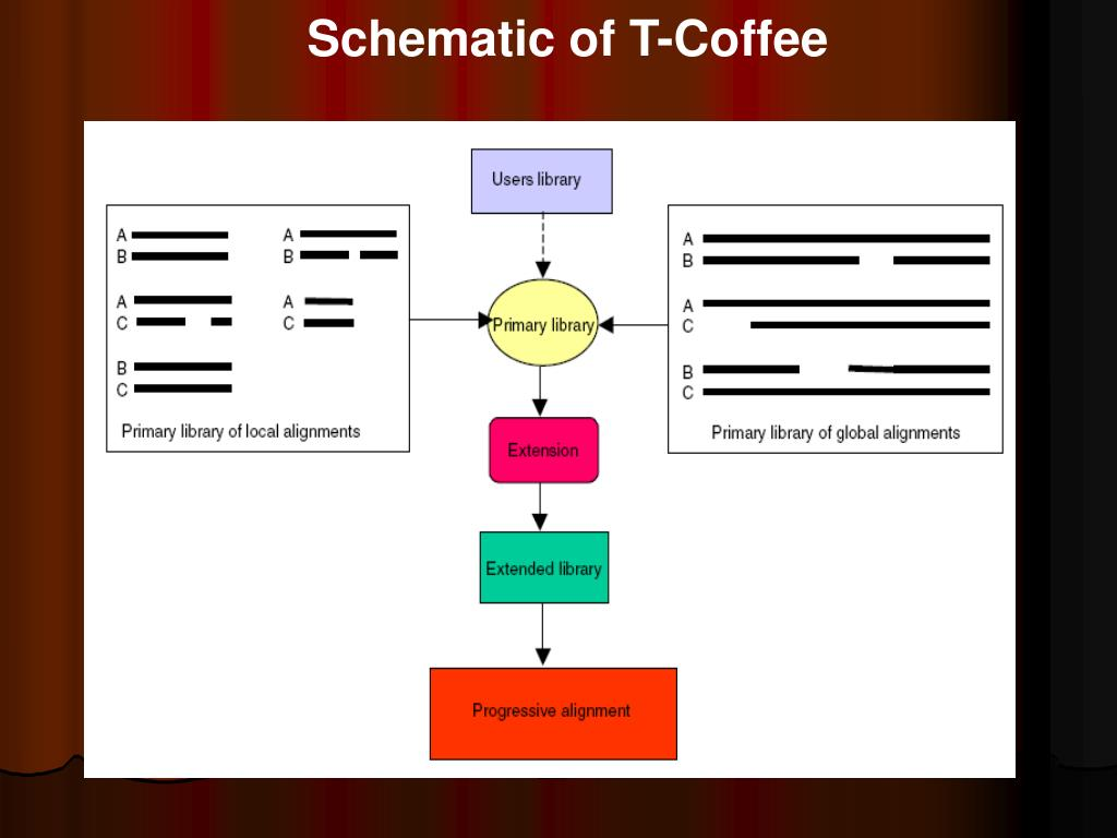 Schematic of T-Coffee