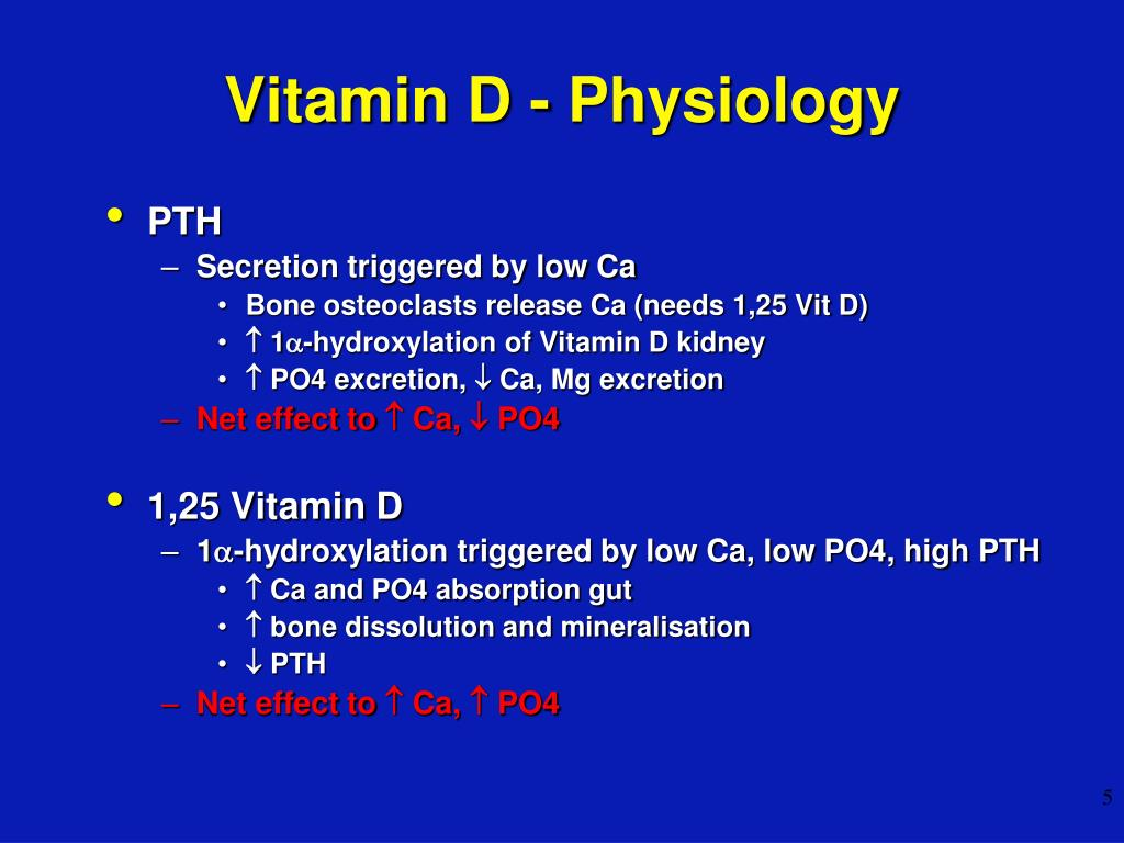 Vitamin D - Physiology