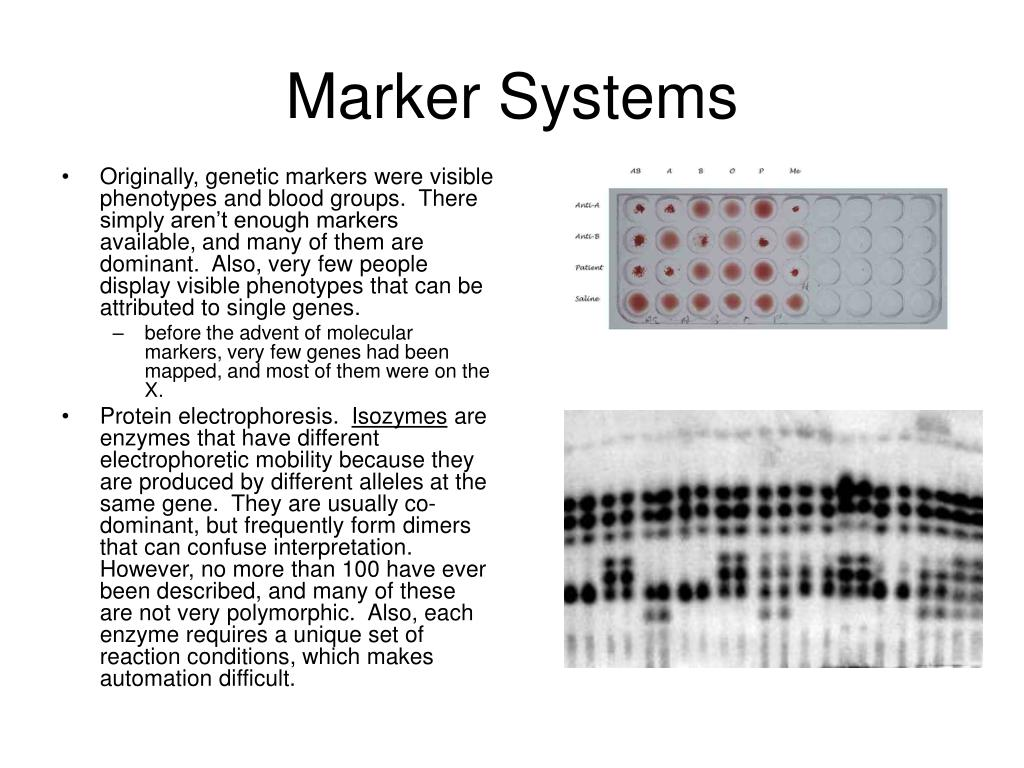 Marker Systems