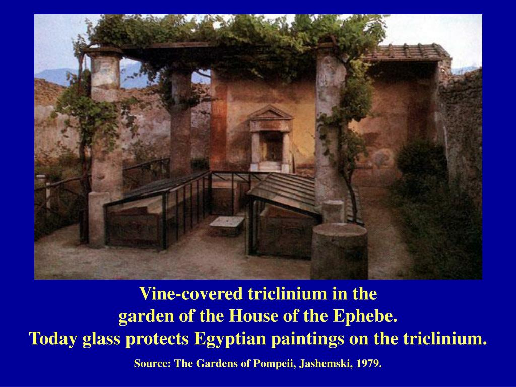 Vine-covered triclinium in the