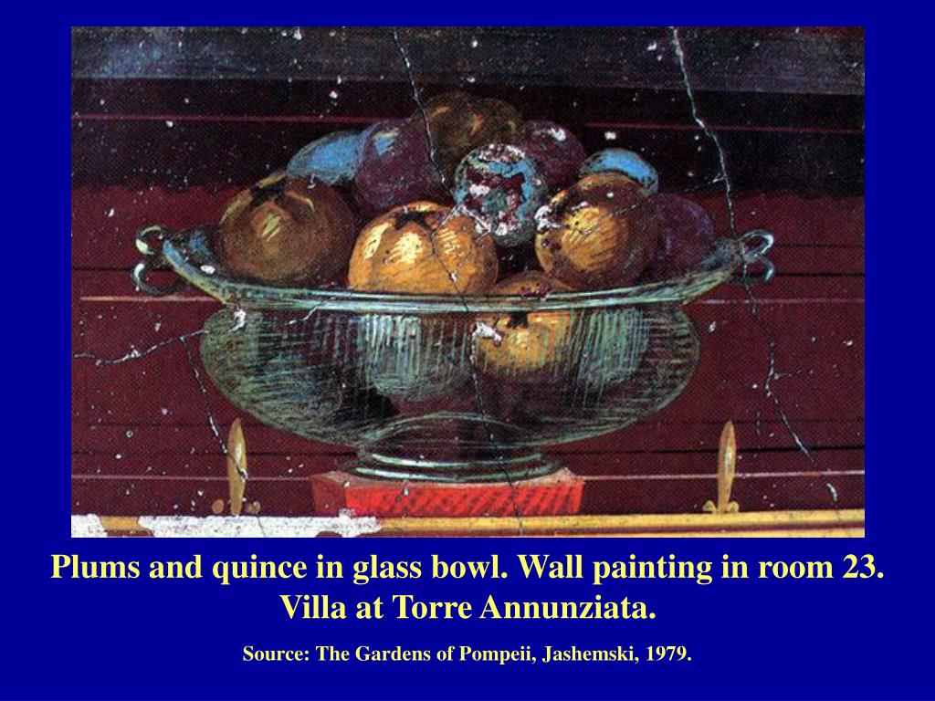 Plums and quince in glass bowl. Wall painting in room 23.