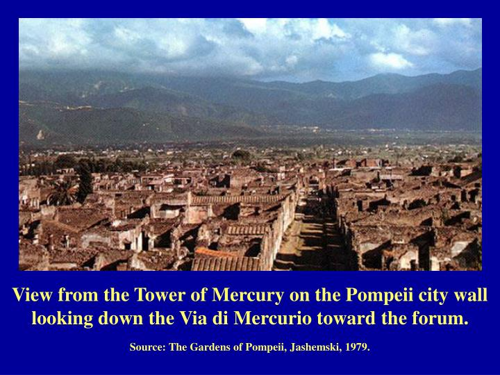 View from the Tower of Mercury on the Pompeii city wall looking down the Via di Mercurio toward the ...