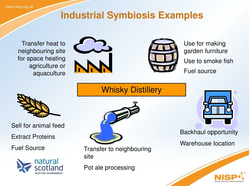 Industrial Symbiosis Examples