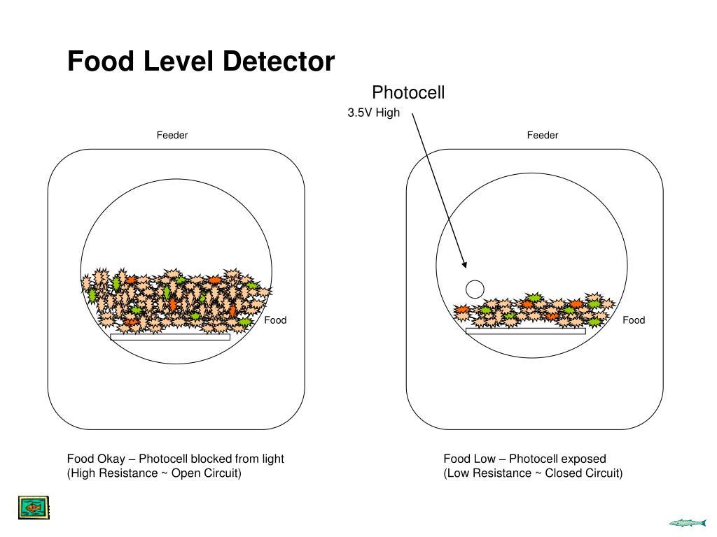 Food Level Detector