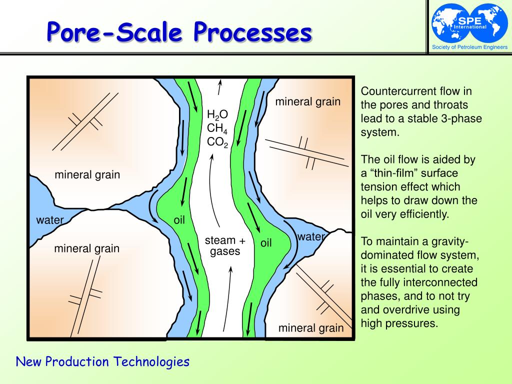 Pore-Scale Processes