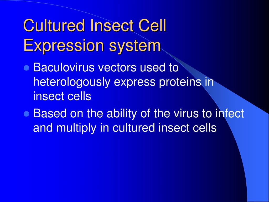 Cultured Insect Cell Expression system