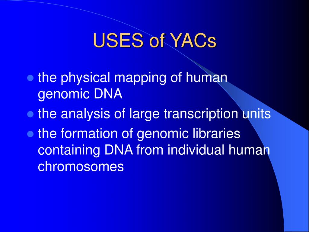 USES of YACs