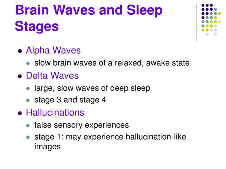 Brain Waves and Sleep Stages