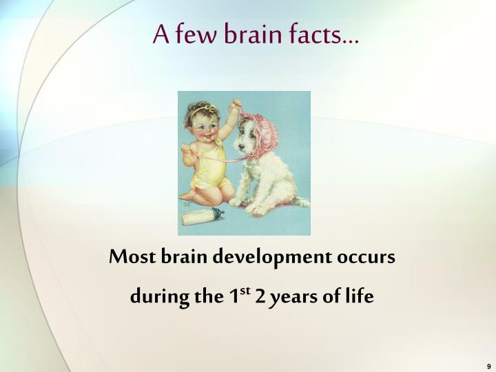 A few brain facts…