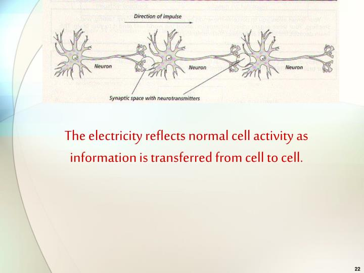 The electricity reflects normal cell activity as information is transferred from cell to cell.