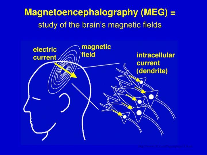 Magnetoencephalography (MEG) =