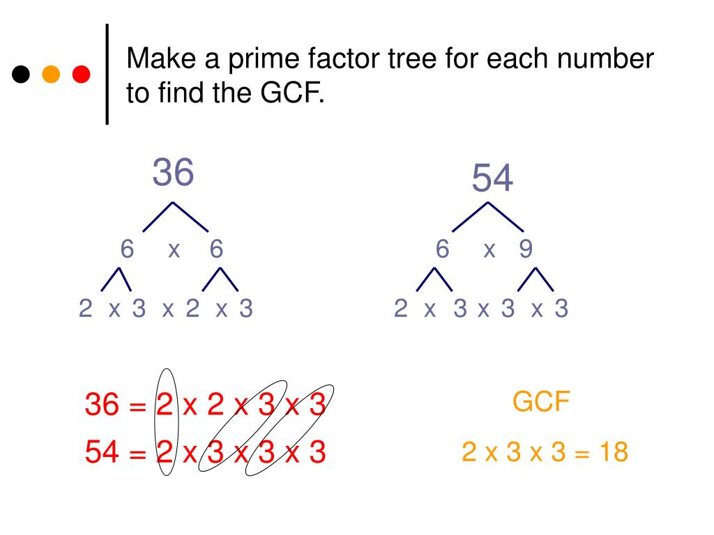 Factor trees worksheets with answers