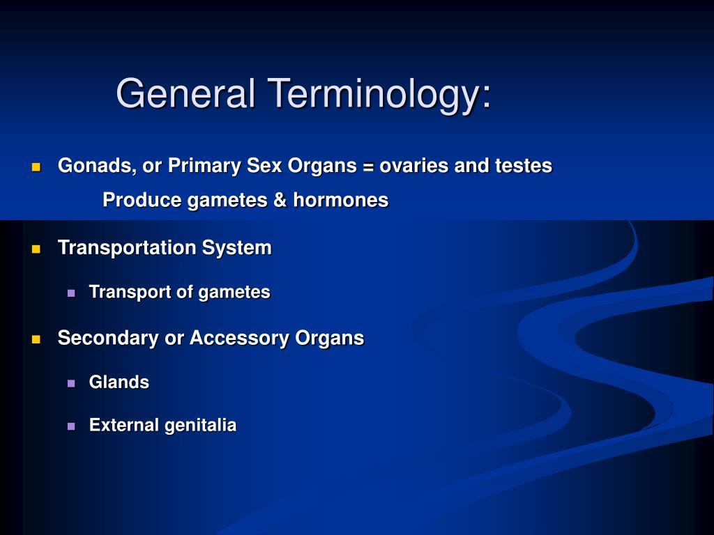 General Terminology: