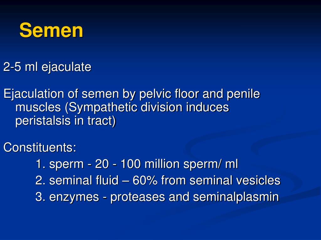 2-5 ml ejaculate