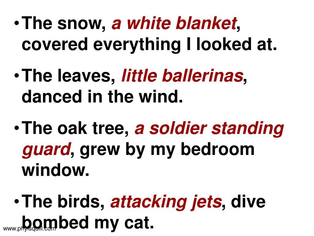 The snow,