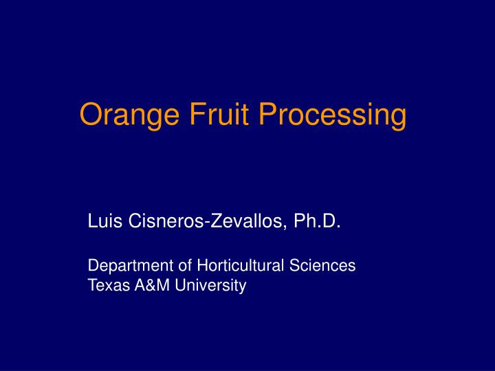 Orange fruit processing l.jpg