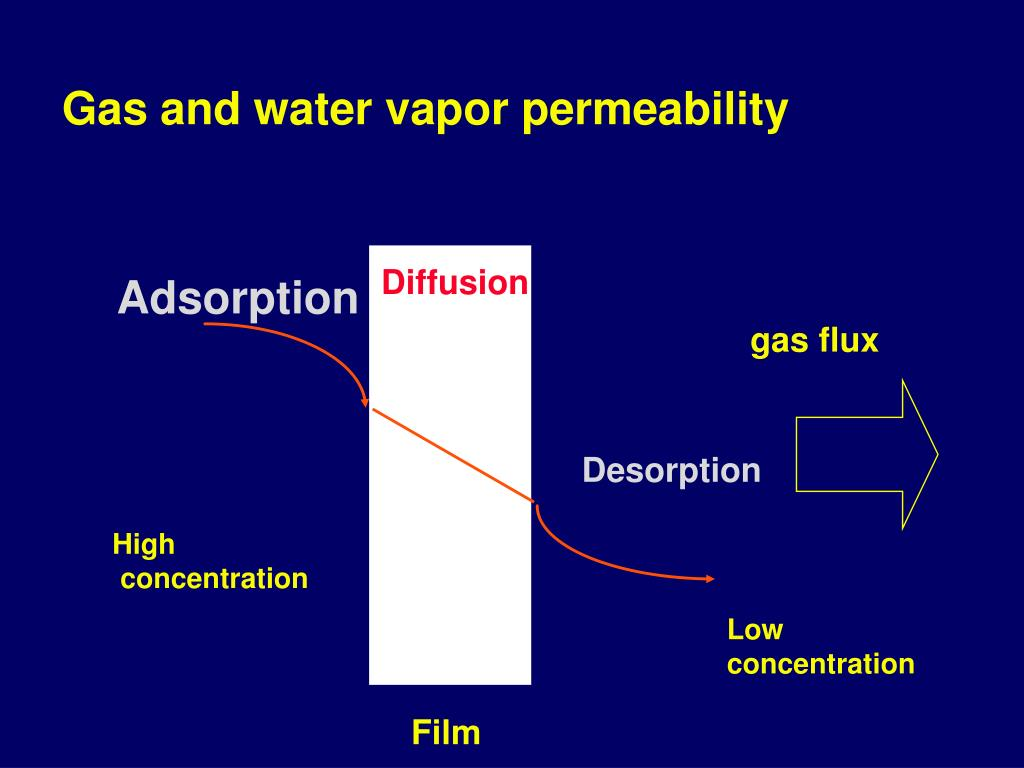 Gas and water vapor permeability