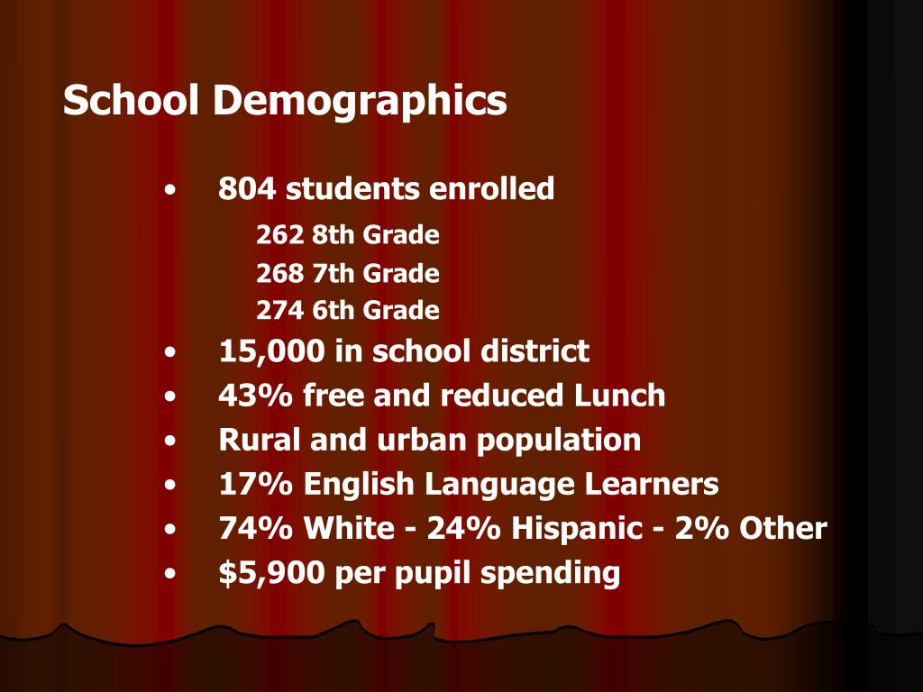 School Demographics
