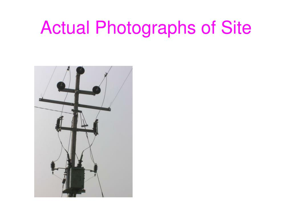 Actual Photographs of Site