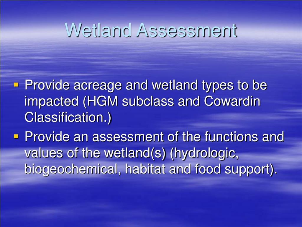 Wetland Assessment