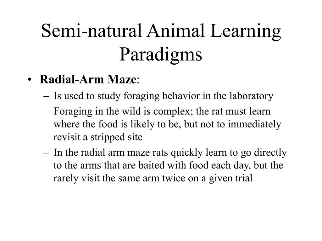 Semi-natural Animal Learning Paradigms