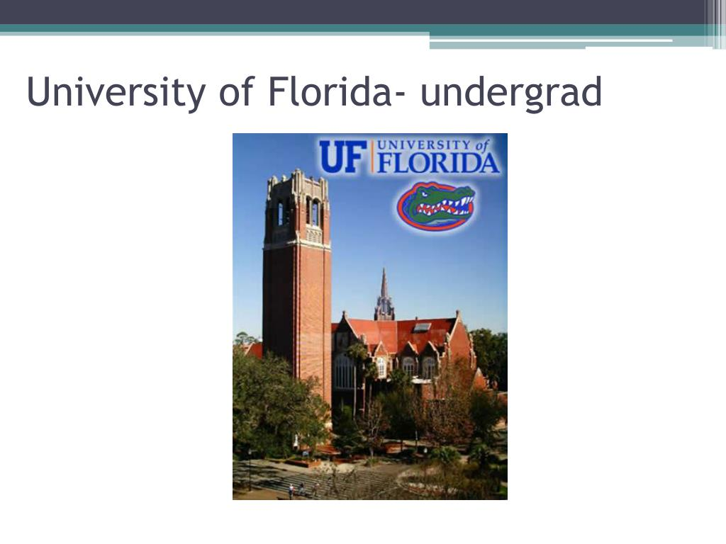 University of Florida- undergrad