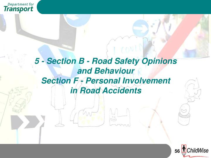 5 - Section B - Road Safety Opinions