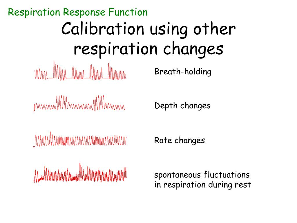 Respiration Response Function