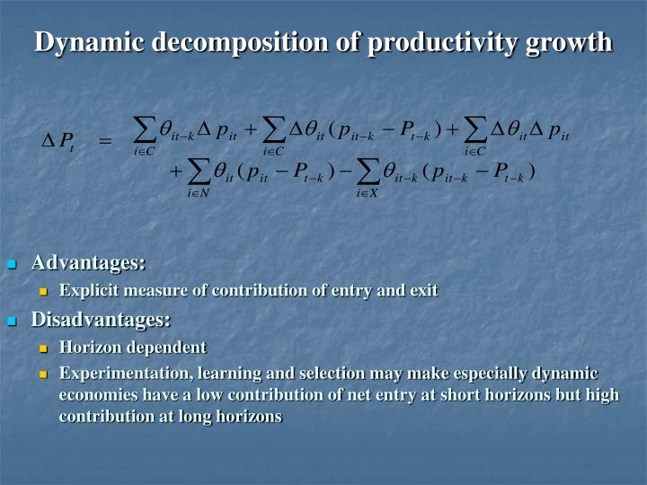 Dynamic decomposition of productivity growth